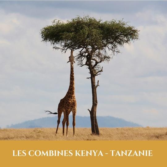 Combinés Kenya Tanzanie