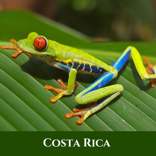 Voyages Costa-Rica