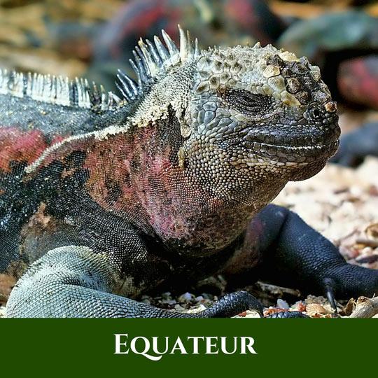 Voyages Equateur