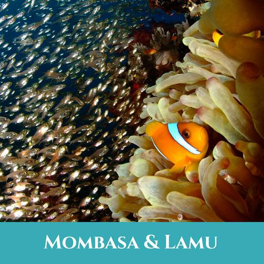 Voyages Mombasa et Lamu