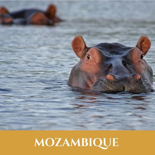 Voyages Mozambique