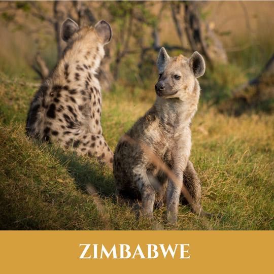 Voyage Zimbabwe