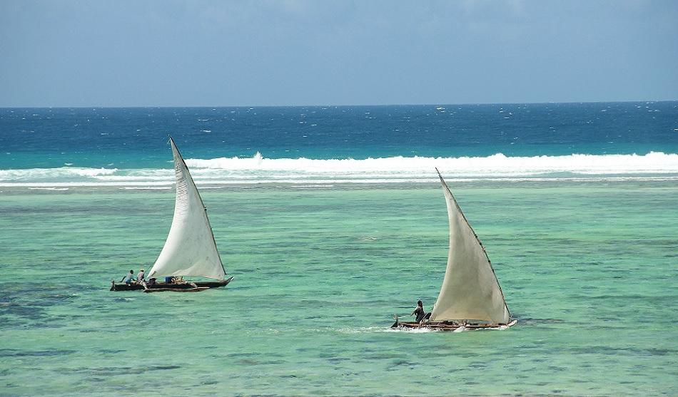 Safari à Saadani et Plage à Zanzibar 3