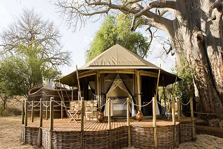 tanzanie swala camp