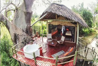 tanzanie tarangire river camp