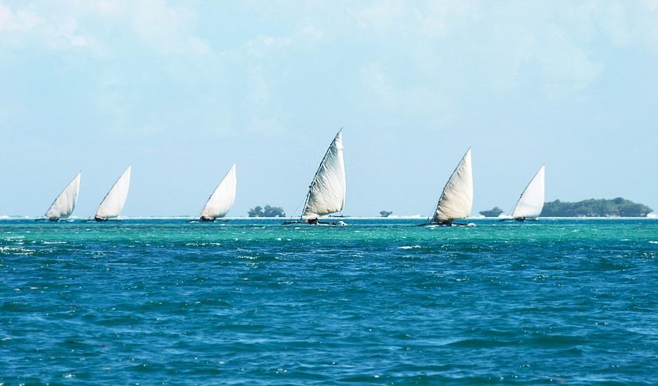 Safari Nord, Mkomazi et Plage à Saadani 3 Zanzibar 950 4