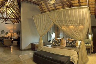 Nos lodges en Afrique du Sud 27 afrique du sud elephant plains game lodge0