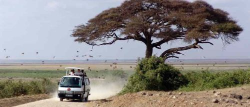 Séjours balnéaires 5 kenya de masai mara a mombasa1