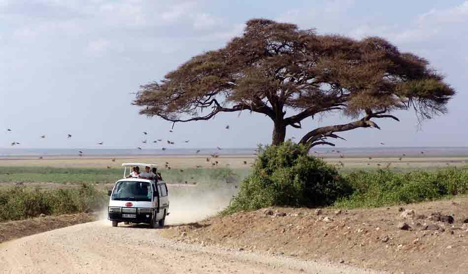 Kenya 4 kenya de masai mara a mombasa1