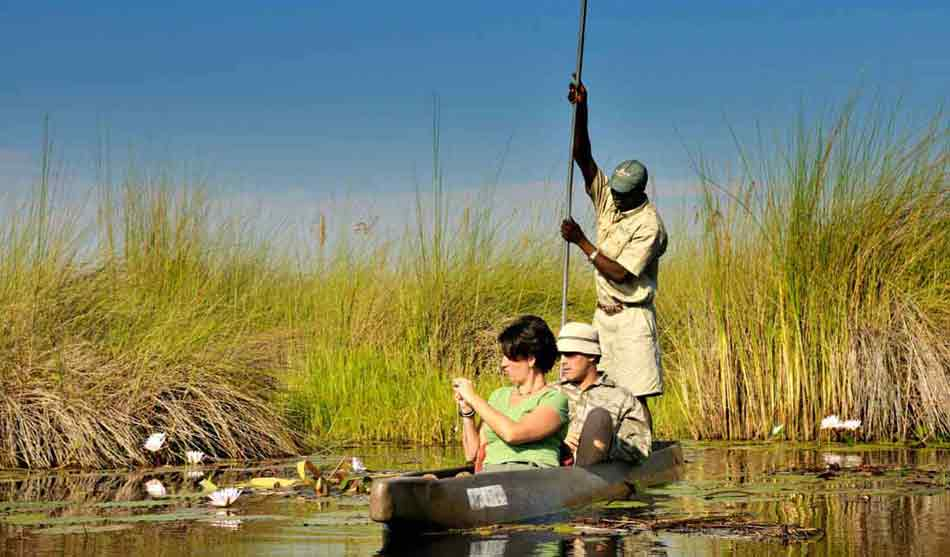Botswana 13 botswana safari a pieds okavango1 1