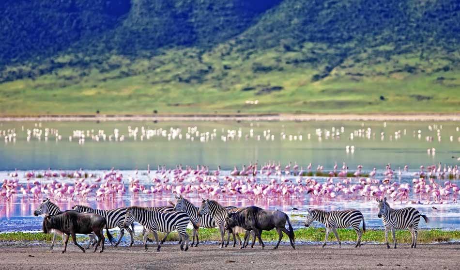 Les combinés Kenya-Tanzanie 3 combine kenya tanzanie aventure1 1