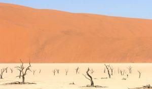 Namibie 7