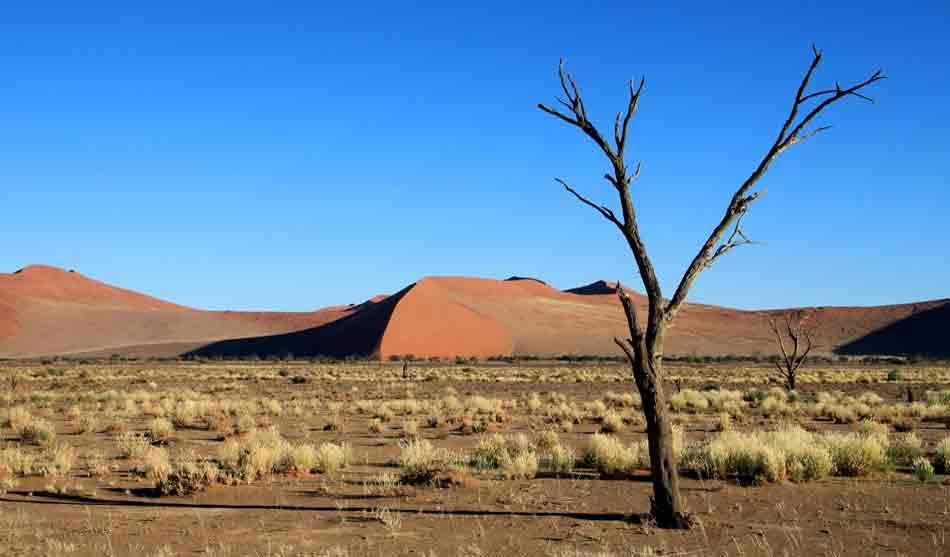 Autotour Petite Escapade 12 jours 3 namibie autotour 12 jours1