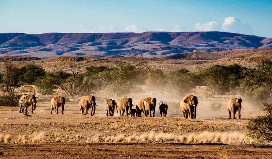 Namibie 2