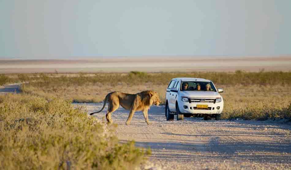 Namibie 5