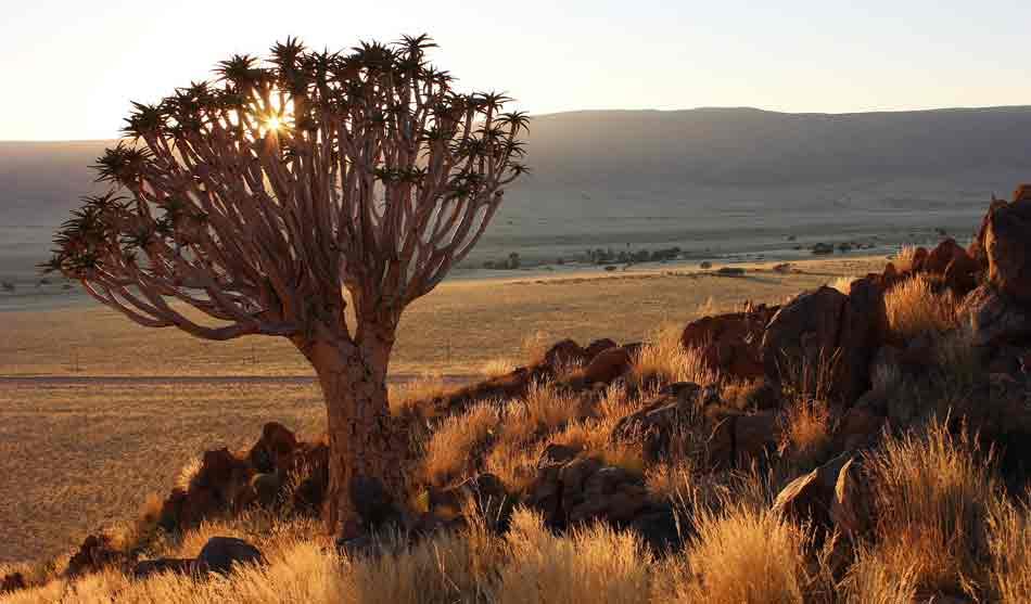 Namibie 13