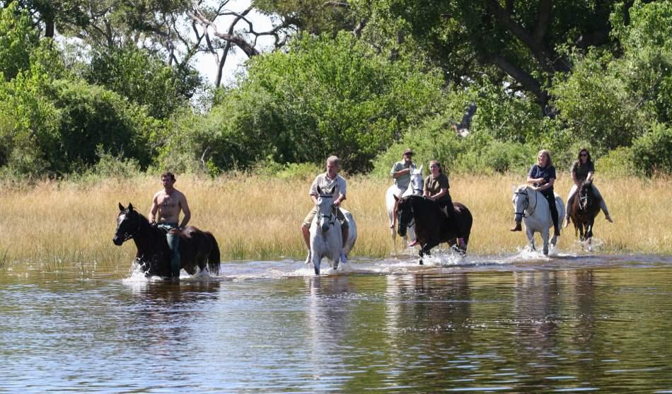 Botswana 10 safari cheval Botswana 2