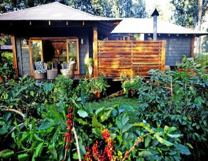 Arusha Coffee Lodge 10 tanzanie arusha coffee lodge10