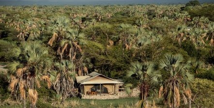 Chem Chem Safari Camp 14 tanzanie chem chem safaris camp13