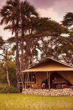 Chem Chem Safari Camp 17 tanzanie chem chem safaris camp16