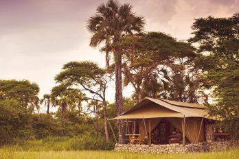 Chem Chem Safari Camp 10 tanzanie chem chem safaris camp17