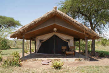 Ikoma Bush Camp 4 tanzanie ikoma tented camp5