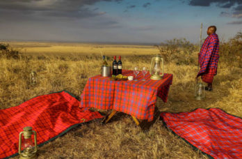 Lemala Ewanjan Tented Camp 4 tanzanie lemala ewanjan tented camp4