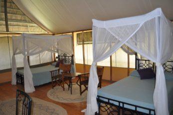 Maramboi Tented Camp 12 tanzanie maramboi tented camp12