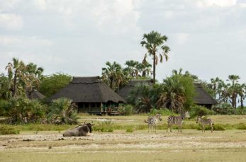 Maramboi Tented Camp 2 tanzanie maramboi tented camp2