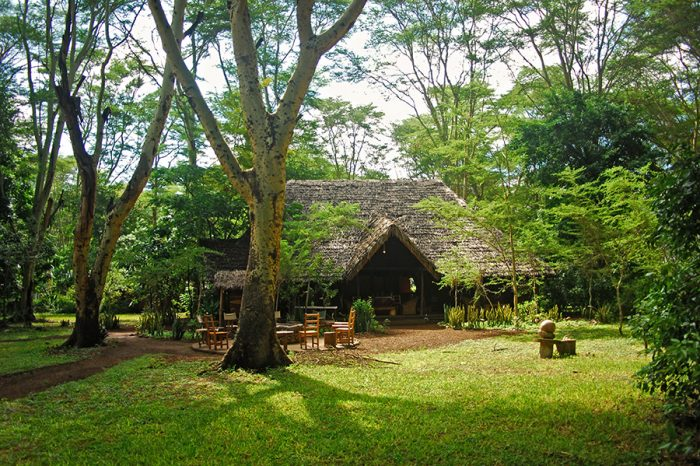 Migunga Tented Camp 1 tanzanie migunga tented camp1