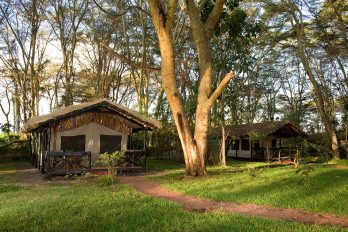 Migunga Tented Camp 6 tanzanie migunga tented camp3