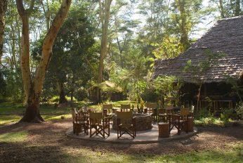 Migunga Tented Camp 5 tanzanie migunga tented camp7