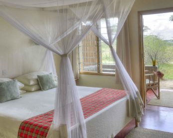 Ndutu Safari Lodge 2 tanzanie ndutu safari lodge5