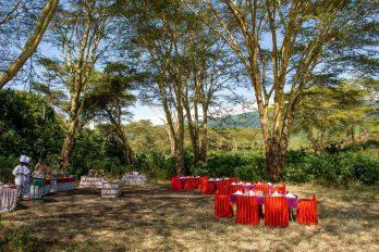 Ngorongoro Serena Lodge 5 tanzanie ngorongoro safari lodge5