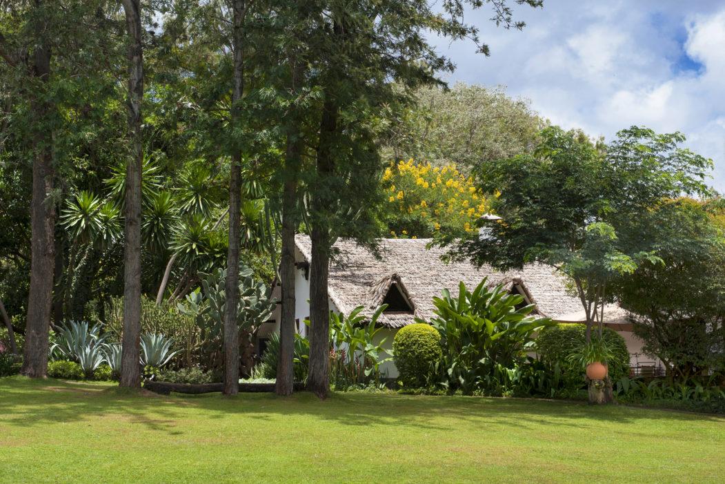 Plantation Lodge 13 tanzanie plantation lodge16