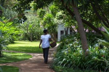 Plantation Lodge 10 tanzanie plantation lodge2