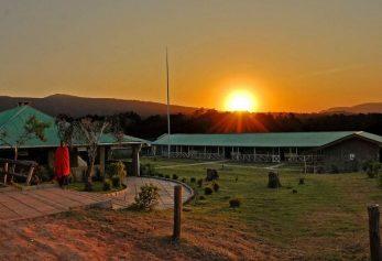 Rhino Lodge 3