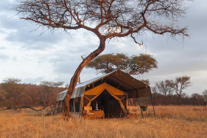 Serengeti Kati Kati Camp 1 tanzanie serenegeti kati kati camp6