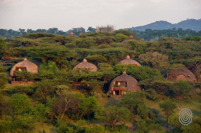 Serengeti Serena Lodge 9 tanzanie serengeti serena safari lodge11