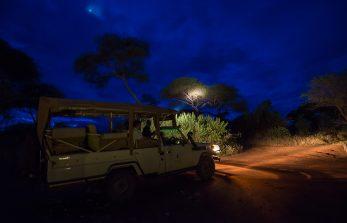 Swala Camp 6 tanzanie swala camp8