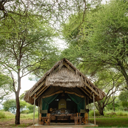 Tarangire Safari Lodge 1 tanzanie tarangire safari lodge1