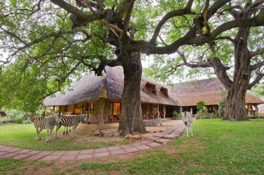 Blyde River Canyon Lodge 11 afrique du sud blyde river canyon lodge2