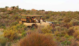 Bushmans Kloof 8 afrique du sud bushmans kloof16