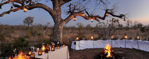 Idube Game Lodge 10 afrique du sud idube game lodge11