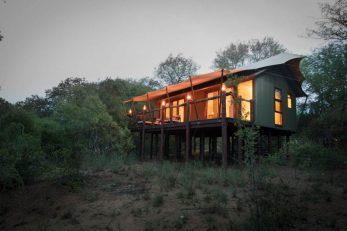 Kapama Buffalo Camp 8 afrique du sud kapama buffalo camp8