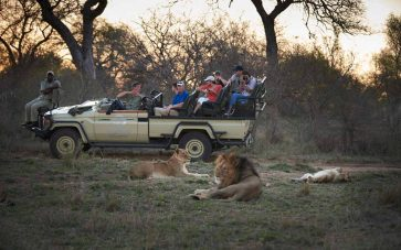Kapama Southern Camp 9 afrique du sud kapama southern camp12