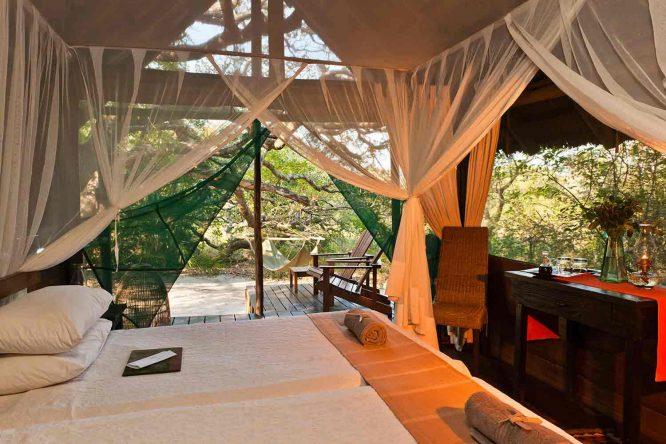 Kosi Forest Lodge 1 afrique du sud kosi forest lodge1 1
