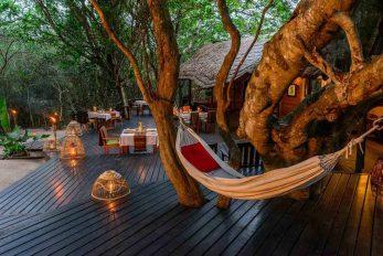Kosi Forest Lodge 5 afrique du sud kosi forest lodge5 1