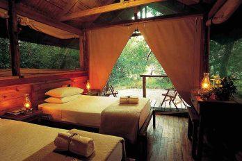 Kosi Forest Lodge 6 afrique du sud kosi forest lodge6 1