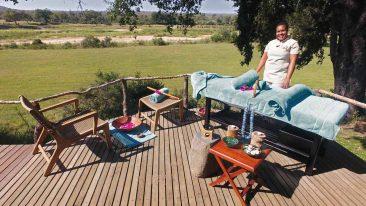 Mala Mala Game Reserve 7 afrique du sud malamala camp6